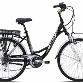 Bici elettrica Betty Plus 24